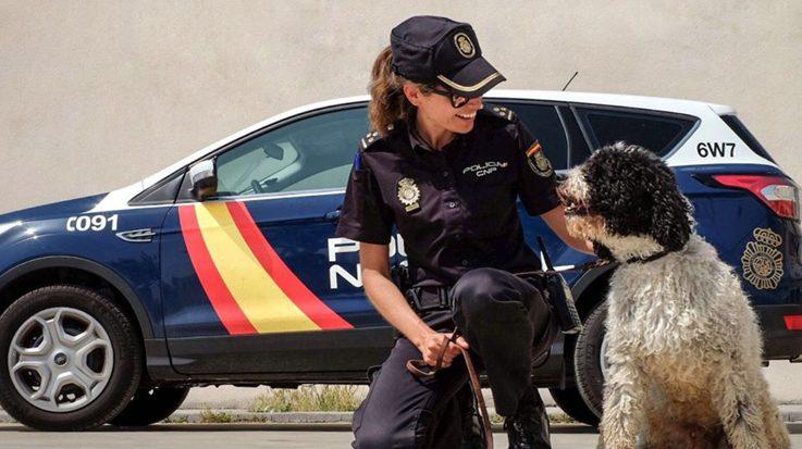 oposiciones a policia nacional 2016